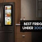 10 Best Fridges Under 30,000 in India 【Buying Guide 2021】